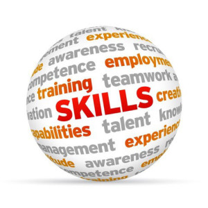 Skills Development Levy