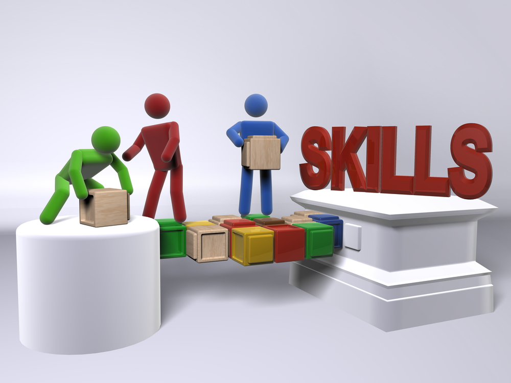 Skills Development Levy